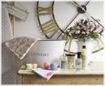dalani shop online design  (11)