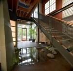 giardini acquatici a casa tendenze design oriente (2)