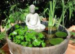 giardini acquatici a casa tendenze design oriente (4)