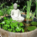 giardini-acquatici-a-casa-tendenze-design-oriente-(4)
