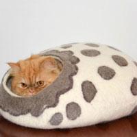 cucce-cani-gatti-design-(5)