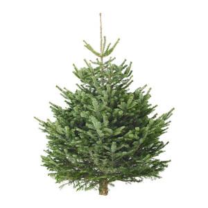 alberi natale ikea 2015 prezzi