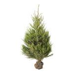 ikea albero natale 2015 prezzi