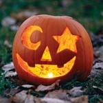 zucca halloween 3